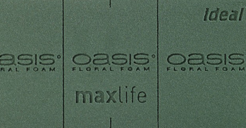 Oasis®